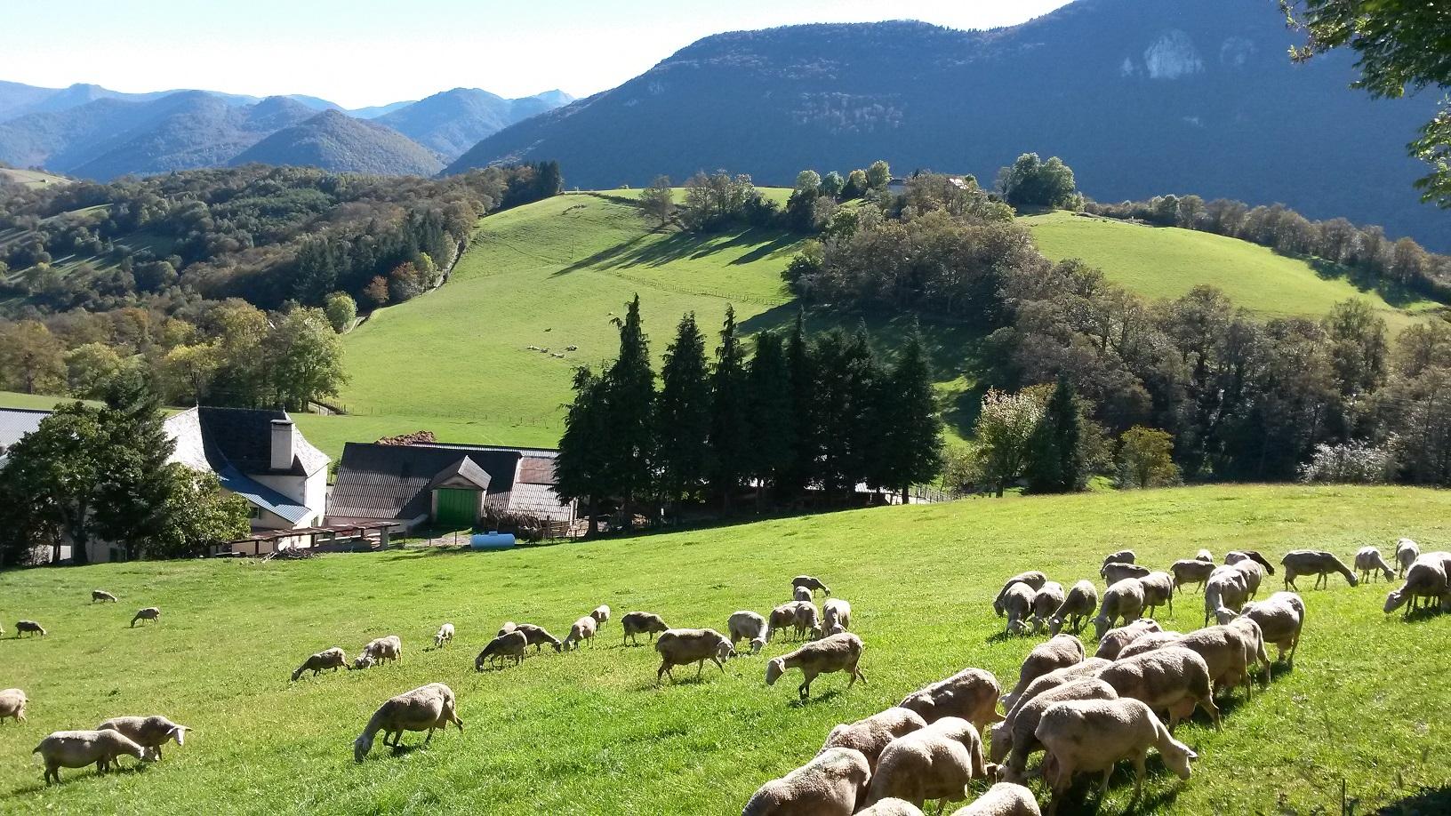 La beauté du Chemin le GR78 de Lourdes a Eysus